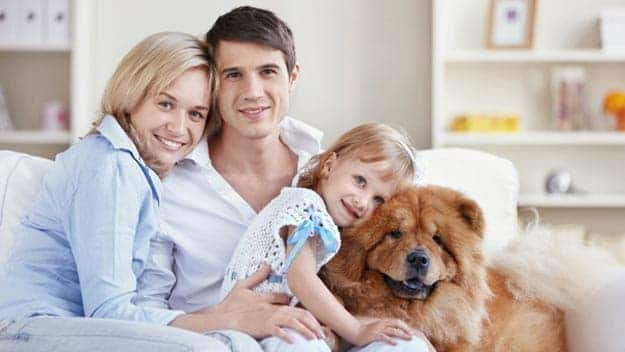 Wills & Trusts dog-young-family Direct Wills Blackwall